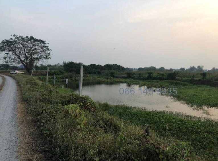 ขายที่ดิน 30 ไร่ เข้าออกและติดถนน 2 ด้านมีชลประทานผ่านมีน้ำทั้งปี บางเลน นครปฐม