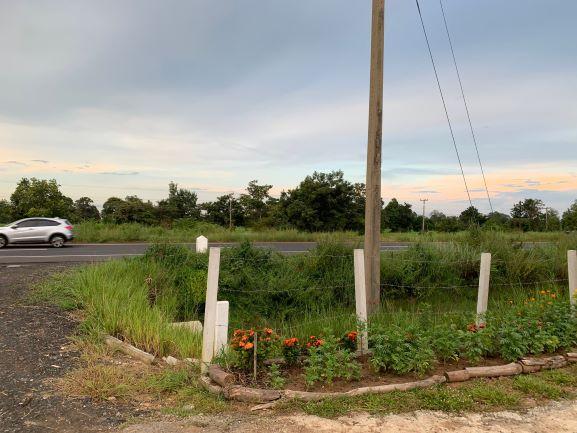 ขายที่ดินติดถนนทางหลวงแผ่นดินหมายเลข 24 จ.สุรินทร์