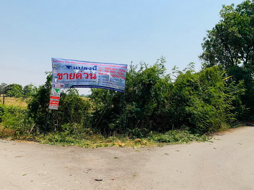 ขายที่ดินเปล่า 100 ตรว. ทำเลดี ราคาถูก ซอยหมู่บ้านจัดสรรลำพะอง ต.ทับยาว อ.ลาดกระบัง จ.กรุงเทพมหานคร