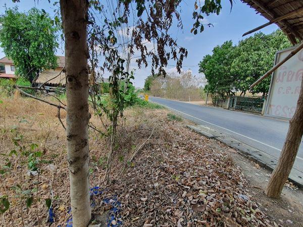ลดราคา ขายที่ดินติดถนน ทำเลดี เมืองกาญจนบุรี ลาดหญ้า 2 งาน 40 ตรว. แหล่งชุมชน ม.ท่าเสา