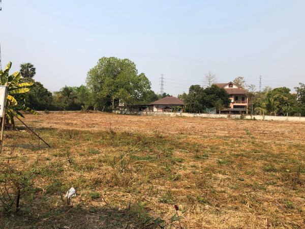 ขายที่ดินผังสีชมพู ใกล้เมืองเชียงใหม่ เนื้อที่ 2-2-72 ไร่