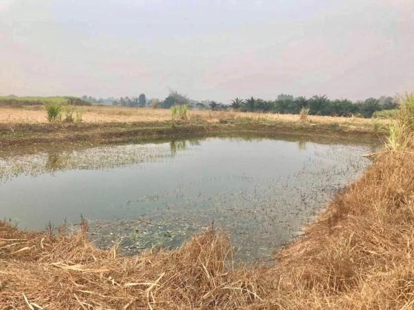 ขายที่ดินราชบุรี เนื้อที่ 39-1-44 ไร่ ดินดี น้ำดี ถนนกำลังขยาย 4 เลนรองรับเส้นเศรษฐกิจ