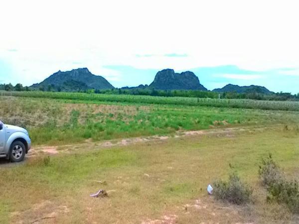 ที่ดินแบ่งขาย หลายแปลง อ.จอมบึง จ.ราชบุรี ห่างจาก รพ.สมเด็จพระยุพราช 5 กม.