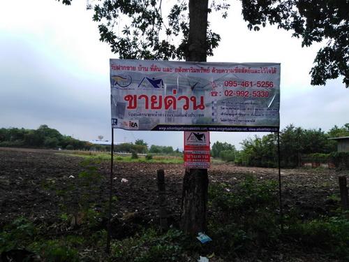 ขายที่ดิน 9 ไร่ ต.พุเตย อ.วิเชียร์บุรี จ.เพชรบูรณ์