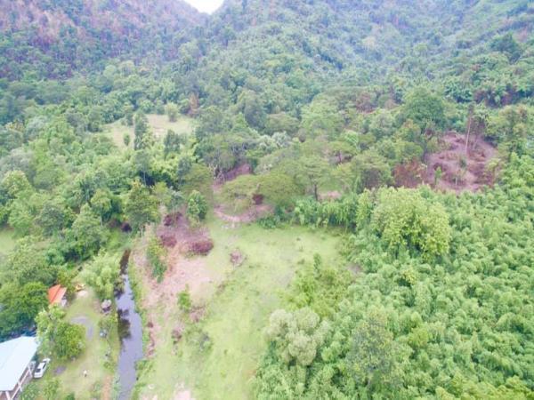 ขายด่วน ที่ดิน 11ไร่ แปลงสวย ธรรมชาติ ฮวงจุ้ยดีมาก ด้านหลังที่ดินติดเขาใหญ่ ด้านหน้าติดลำธาร นครนายก
