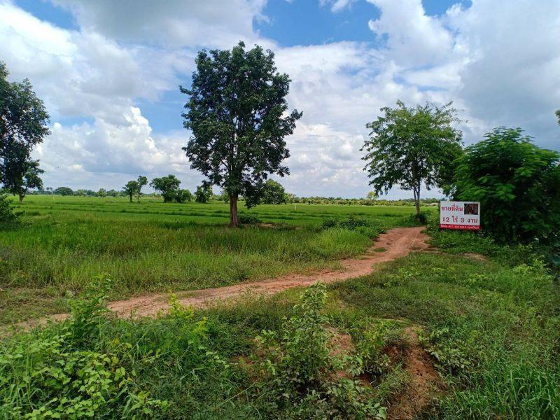 ขาย ที่ดิน AEC พื้นที่เศษฐกิจ (หน้ากว้าง 45 เมตร) ทำเลทอง  12 ไร่ 3 งาน ห่างจากสะพานมิตรภาพไทยลาวไม่ถึง 5 กิโล