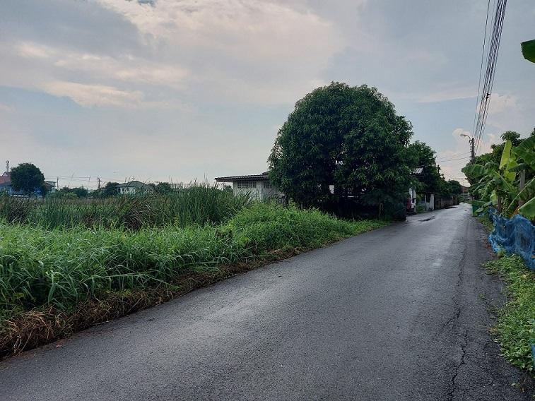 ขายที่ดินแปลงสวย 100 วา กว้าง 20X17เมตร ถนนราษฏร์อุทิศ ซ.12(ซอยสวนขวัญ) เข้าซอย 150 เมตร ใกล้สถานีรถไฟฟ้า สายสีส้มและสีชมพู จุดเชื่อมต่อสุวินทวงค์ แขวง แสนแสบ เขตมีนบุรี กรุงเทพมหานคร