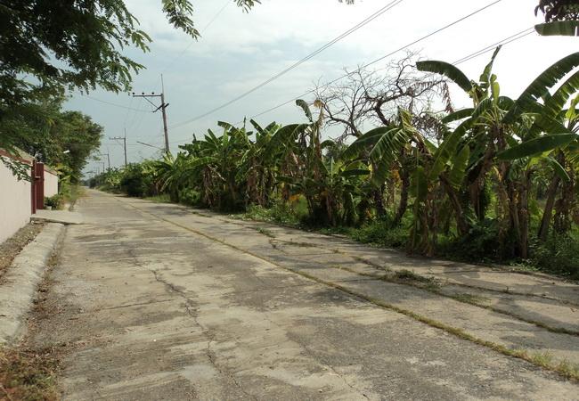 ขาย ที่ดิน ซอยบงกช 40 คลองสอง ถนนรังสิต-นครนายก อ.คลองหลวง จ.ปทุมธานี