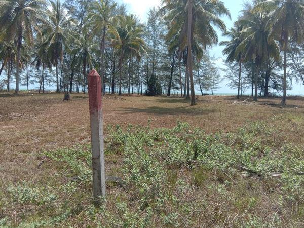 ขายที่ดินติดทะเล ปากดวด ท่าศาลา นครศรีธรรมราช ที่ดินสวยมาก หน้าหาดกว้างมาก
