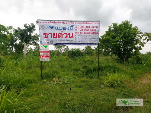 ขายที่ดินพร้อมสวนสับปะรด 2 แปลงรวมกัน 18-0-65 ไร่ ทำเลดี ห่างจากถนน (4 เลน) อ.เมือง จ.ลำปาง