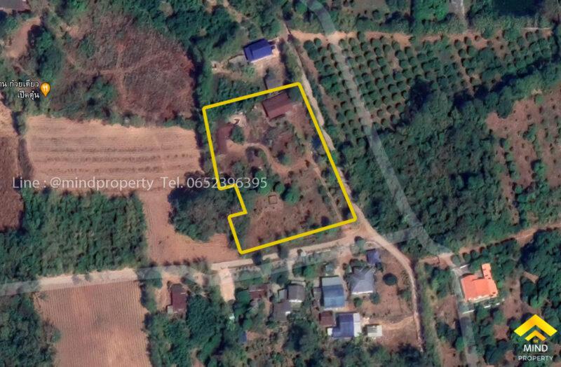 ขายด่วนที่ดินพร้อมสิ่งปลูกสร้าง บ้านเดี่ยวชั้นเดียว 2 หลัง ตำบลโคกปีบ อำเภอศรีมโหสถ ปราจีนบุรี