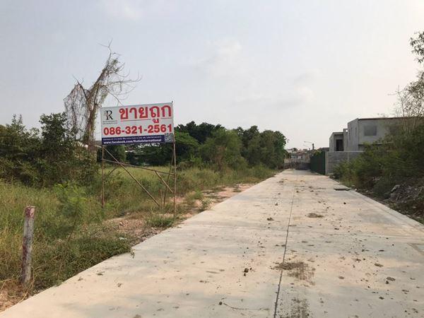 ขายที่ดิน ซอยเพิ่มสิน 66 ออเงิน เขตสายไหม 3 ไร่ ติดถนน 300 ม. ลึก 40 ม. ติดถนนคอนกรีตกว้าง 6 เมตร แบ่งขายได้ โทร 0863212561