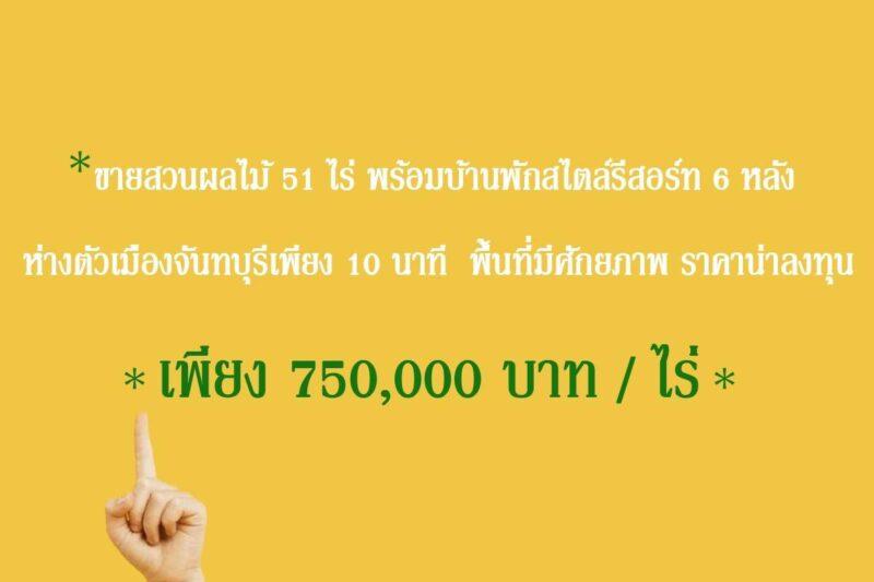 ขายสวนผลไม้ 51 ไร่ จ้า #ชีวิตดีที่บ้านสวน พร้อมรีสอร์ท 6 หลัง ใกล้ตัวเมืองเพียง 6 นาที เพียง 750,000 บาท