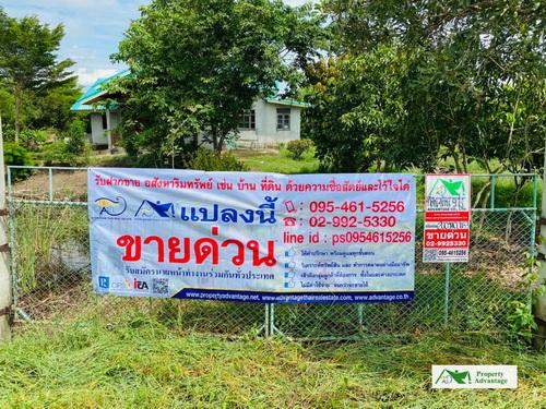 ที่ดิน+บ้าน เนื้อที่ 9 ไร่ ทำเลดี อ.บางปลาม้า จ.สุพรรณบุรี