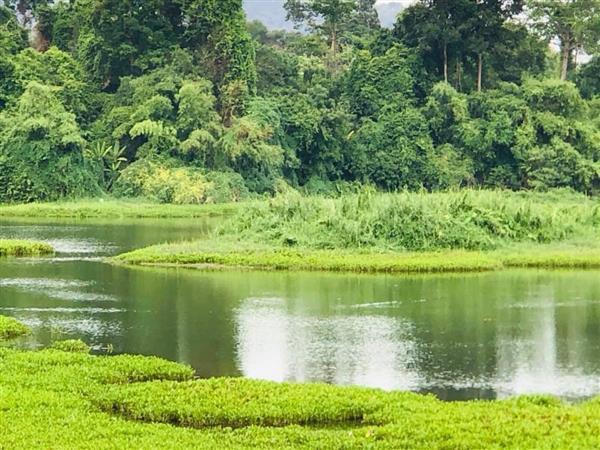 ที่ดิน นครนายก- ปราจีนบุรี -สระบุรี มีหลายเเปลง สวน ที่ราคาถูก  โฉนดทุกเเปลง