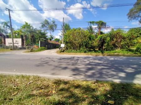 ขาย ที่ดิน ห่างจากถนนหลัก200เมตร ที่ดินเกาะสมุย ลิปะน้อย 38 ไร่