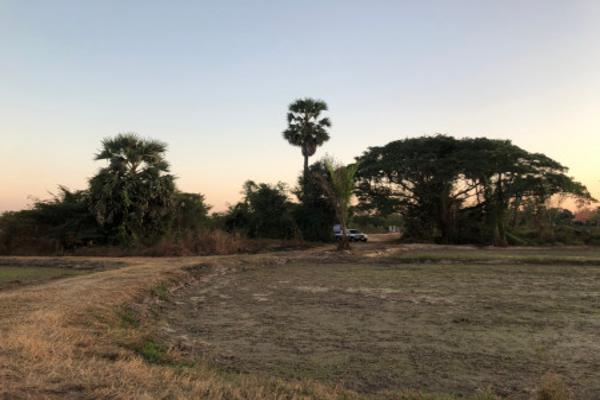 ขาย ที่ดิน YE-69 บ้านหนองแดง หนองคาย 48 ไร่ 2 งาน Nong Khai