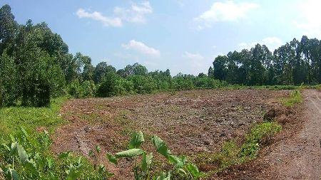 ขาย ที่ดิน ปรับพื้นที่ กะจะสร้างโครงการหมู่บ้าน เอาเข้าจริง ไม่มีเวลาดูแล ต้องการขายยกแปลง 7 ไร่
