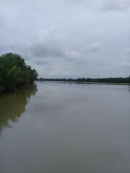 ที่ดินติดแม่น้ำบางปะกง 1 ไร่ครึ่ง อ.บ้านโพธิ์ จ.ฉะเชิงเทรา
