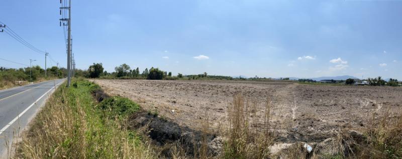 ขายที่ดิน หนองบอนแดง ชลบุรี