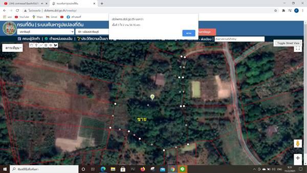 ขายที่ดิน สวนผสม สวนผลไม้ พร้อมให้ผลผลิต ตำบลดงขี้เหล็ก เมืองปราจีนบุรี เจ้าของขายเอง ที่ดินมีโฉนด