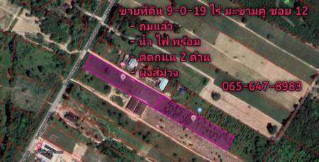 ขายที่ดินระยอง มะขามคู่ ซอย12    – 9 ไร่ 0 งาน 19 ตร.วา ขายถูกมาก ผังสีม่วง – 065-647-8983