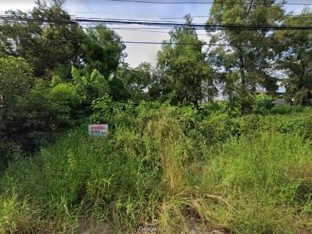 ขายที่ดินหมู่บ้านเมืองเอก โครงการ 2 เนื้อที่ 195 ตรว (แบ่งเป็น 2แปลง 97 และ 98 ตรว.) ไม่ขายแยก
