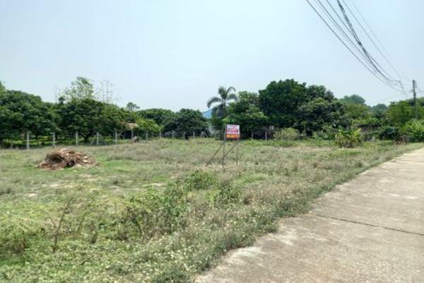ขาย ที่ดิน แปลงสวย ซ.ป่าตัน 5 ต.เหมืองจี้ อ.เมืองลำพูน 2 งาน 22 ตร.วา เหมาะสร้างบ้านอยู่เอง หรือสร้างบ้านขาย