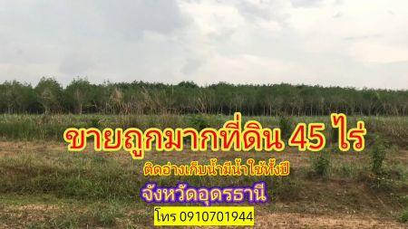 ขาย ที่ดิน ที่ดินอุดรแปลงสวยๆราคาถูก ที่ดินอำเภอเพ็ญ 45 ไร่ ขับรถถึงที่ดินที่ดินห่างจากถนนลาดยางเพียง 500 เมตร