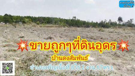 ขาย ที่ดิน ขายที่ดินอำเภอเพ็ญเนื้อที่10ไร่2งาน67ตรว. ที่ดินอำเภอเพ็ญ 8 ไร่ 2 งาน 67 ตร.วา ราคาต่อรองได้