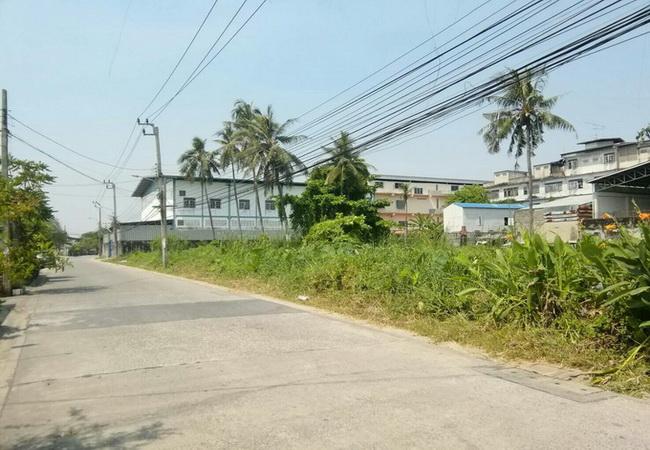 ขาย ที่ดิน ซอยบางแค 14 ถนนเพชรเกษม เขตภาษีเจริญ กรุงเทพมหานคร