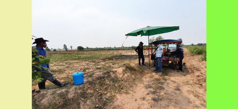 ขายถูกมากที่ดินอำเภอกระนวน ขอนแก่น ที่ดินสวยขายถูก ไร่ละ 100,000฿ ถูกกว่าทั่วไปมาก
