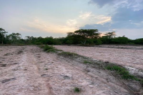 ขาย ที่ดิน เหมาะขุดดินขาย หรือทำการเกษตร ที่ดินเปล่า ลำปาง  2 ไร่ 1 งาน 25 ตร.วา ราคาต่อรองได้