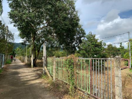 ขาย ที่ดิน สวนทุเรียนวิวล์ภูเขา ที่ดินพร้อมสวนทุเรียน จันทบุรี 5 ไร่ 54 ตร.วา มีระบบน้ำสปริงเกอร์ในสวนทั้งหมด