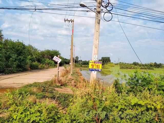 ที่ดิน 1 ไร่ บางขวัญ ฉะเชิงเทรา สี่เหลี่ยมจัตุรัส กว้าง 40 เมตร ลึก 40 เมตร ใกล้มอเตอร์เวย์