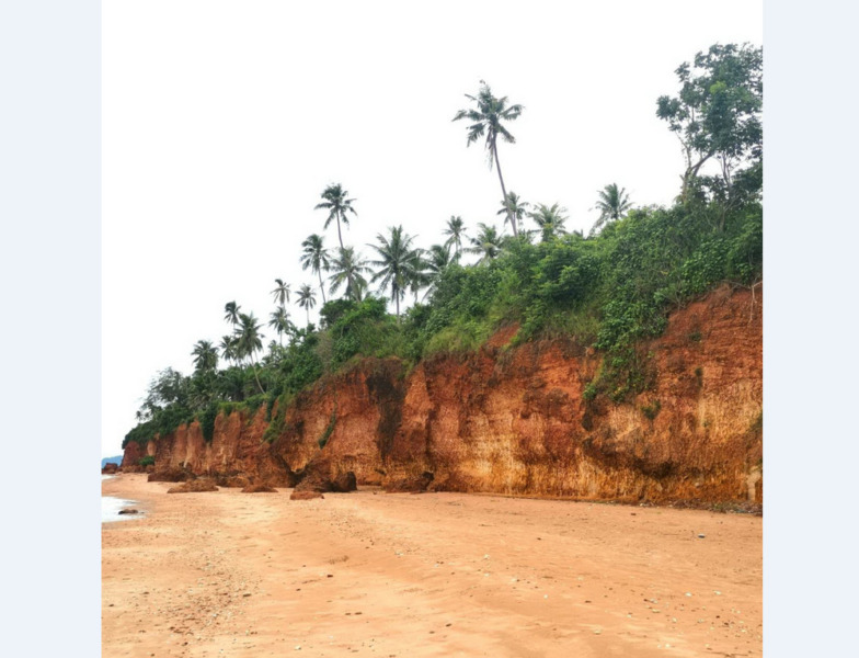 (เจ้าของขาย) ที่ดินติดทะเล ชายหาดฝั่งแดง บางสะพานน้อย ประจวบคีรีขันธ์ จุด Unseen ของจังหวัด ทำเลดีเยี่ยม เหมาะลงทุน