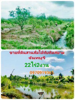 ขาย ที่ดิน  สวนส้มโอทับทิมสยาม จันทบุรี 22 ไร่ 2 งาน 1.7 ตร.วา วิวสวย อากาศดี มีแหล่งน้ำ