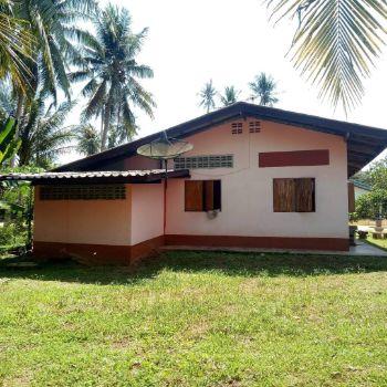 ขาย บ้านเดี่ยว พร้อมที่ดิน ต่ำกว่าราคาประเมิน 100 ตรม. 2 งาน 45 ตร.วา ท่ามกลางธรรมชาติ
